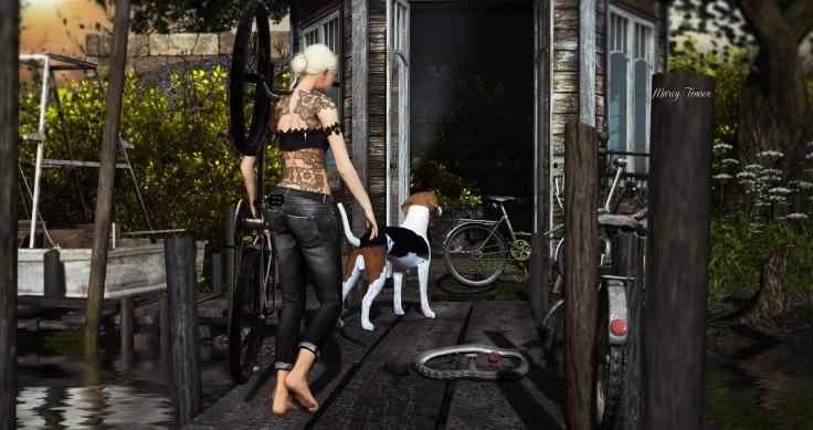 bike_008.png